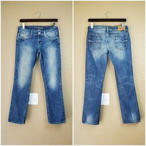 American Eagle Outfitters Vintage Hipster Jeans